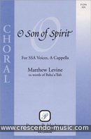 O son of spirit. Levine, Matthew